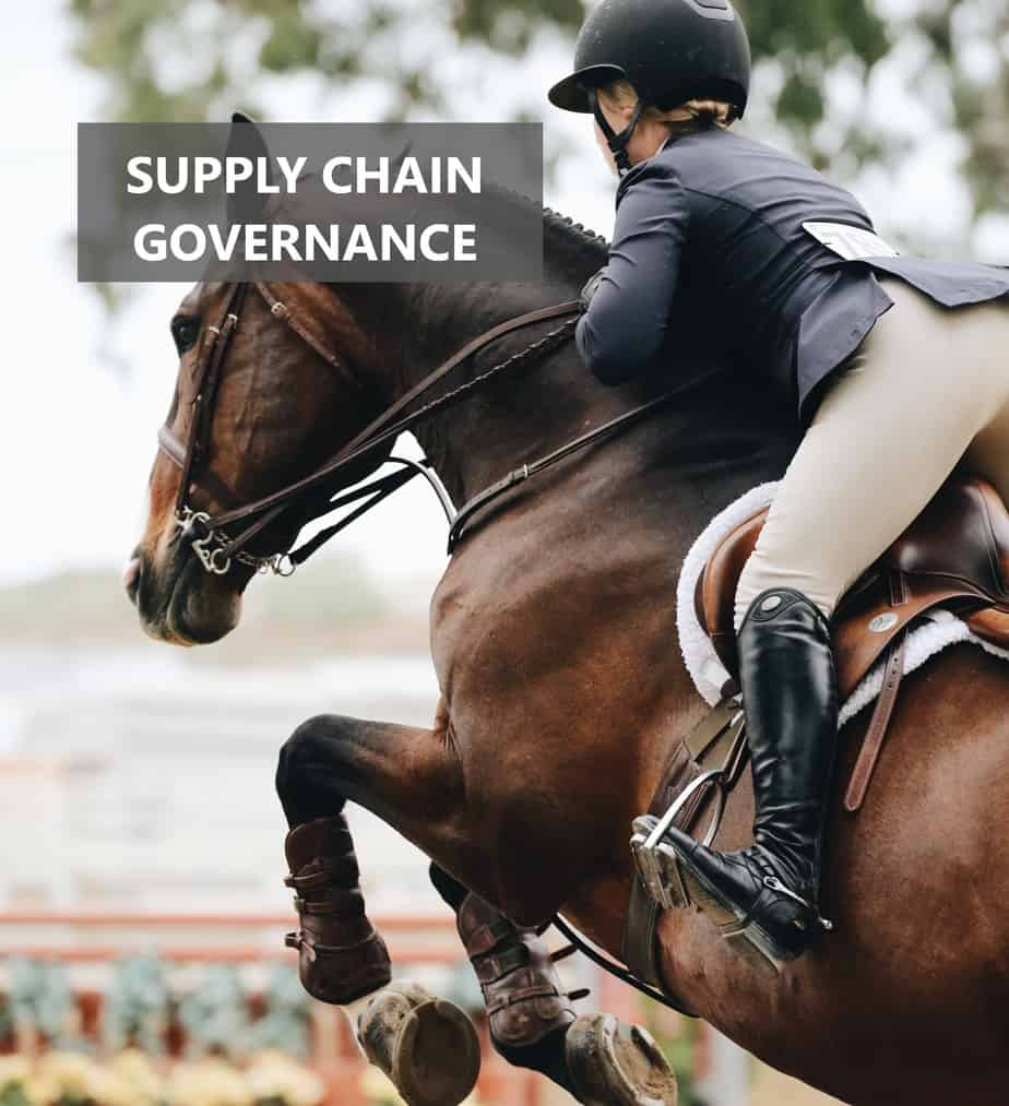 SUPPLY CHAIN GOVERNANCE